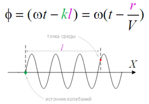 Фаза колеблющейся точки среды плоской волны